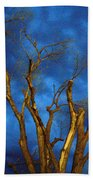 Branches Against Night Sky H Beach Towel