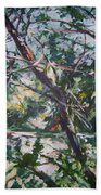 Branches Of Light Beach Towel