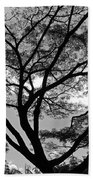 Branching Out In Bw Beach Towel
