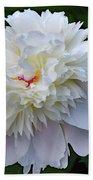 Breathtaking - Festiva Maxima Double White Peony Beach Towel