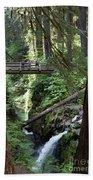 Bridge At Sol Duc Fall #1 Beach Towel