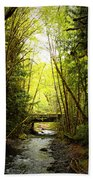 Bridge In The Rainforest Beach Towel