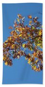 Bright Autumn Branch Beach Towel
