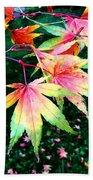 Bright Autumn Leaves Tatton Park Beach Towel