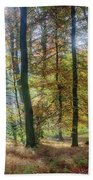 Bright Autumn Morning Beach Towel