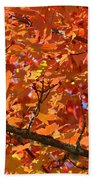 Bright Colorful Autumn Tree Leaves Art Prints Baslee Troutman Beach Towel