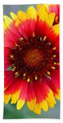 Bright Floral Day Beach Towel