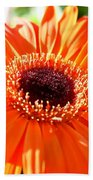 Bright Orange Gerbera  Beach Towel