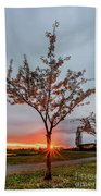 Bright Sun With Long Red Rays Shines Near The Trunk Beach Towel