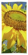 Bright Sunny Happy Yellow Sunflower 10 Sun Flowers Art Prints Baslee Troutman Beach Towel