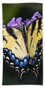 Brilliant Butterfly Beach Towel