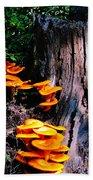 Brilliant Orange Beach Towel