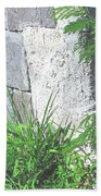 Brimstone Wall Beach Towel