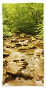 Bronze Stream Beach Towel