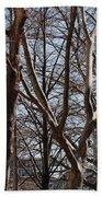 Brooklyn Bridge Thru The Trees Beach Towel