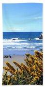 Broom In Bloom Beach Towel