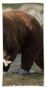 Brown Bear With Salmon Beach Towel