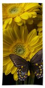 Brown Butterfly On Yellow Daisies  Beach Towel