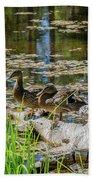 Brown Ducks On Log Beach Towel