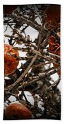 Brown Fruit Abstract Beach Towel