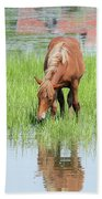 Brown Horse And Foal Nature Spring Scene Beach Towel