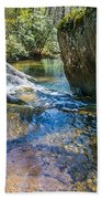 Brown Mountain Forest Beach Towel