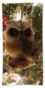 Brown Owl Beach Towel