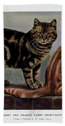 Brown Tabby And Orange Tabby Beach Towel