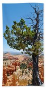Bryce Canyon Fairyland Point Portrait Beach Towel