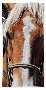 Bryce Canyon Horseback Ride Beach Towel