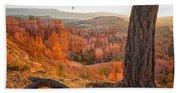 Bryce Canyon National Park Sunrise 2 - Utah Beach Sheet