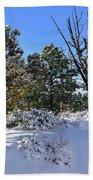Bryce Canyon Snowfall Beach Sheet