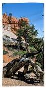 Spires On Navajo Trail Beach Towel