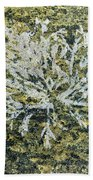 Bryozoan Life Beach Towel