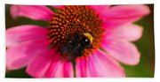 Bumble On A Pistil Beach Towel