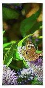 Buckeye Butterfly On The Move 1 Beach Sheet