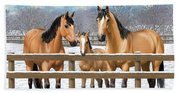 Buckskin Quarter Horses In Snow Beach Towel