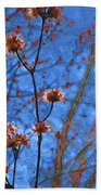 Budding Maples Beach Towel