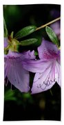 Buds And Blooms Beach Towel