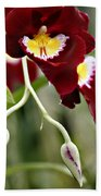 Buds And Blooms Orchid Beach Towel