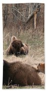 Buffalo And Calf Beach Towel