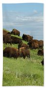 Buffalo Herd Beach Towel
