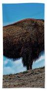 Buffalo In Profile Beach Towel