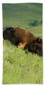 Buffalo On Hillside Beach Towel