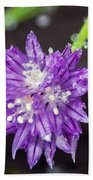 Bug Chilling Chive Beach Towel