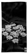 Bug On Flowers Black And White Beach Towel