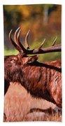 Bugling Elk In Autumn Beach Towel