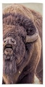 Bull Bison Beach Towel