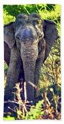 Bull Elephant Threat Beach Towel