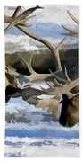 Bull Elk Fighting  Beach Towel